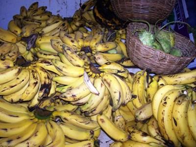 fotos-fala-comunidade-michelle-bananastratadas-006.jpg