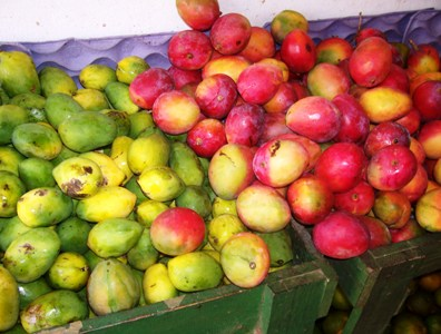 fotos-frutas-michelle-mangastratada.jpg